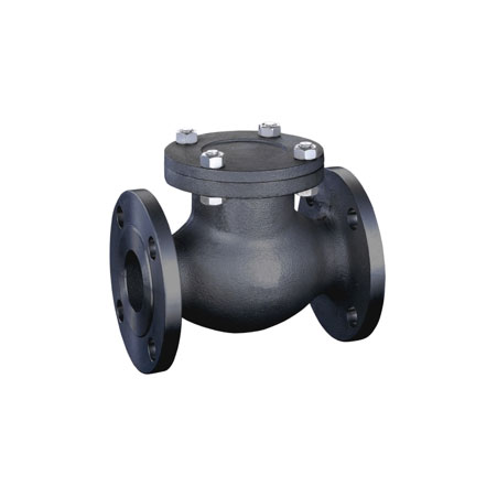CS Check Valves
