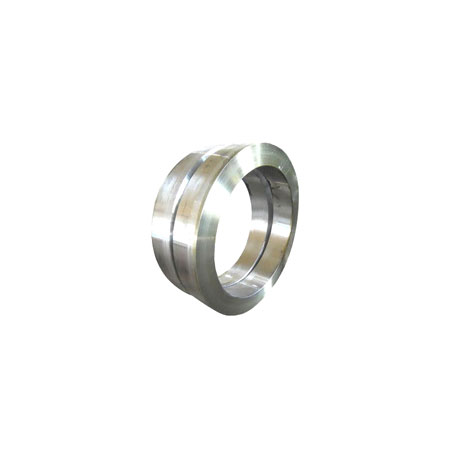 Stainless Steel Forged Ring
